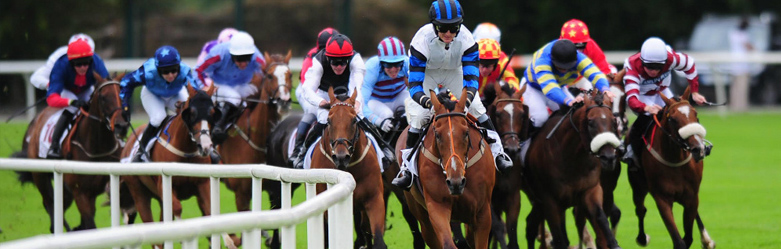 Sporting Trips: Horse Racing - Goldstar Chauffeur Drive